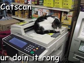 Catscan  ur doin it rong