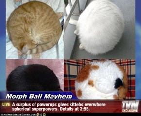 Morph Ball Mayhem - A surplus of powerups gives kittehs everwhere spherical superpowers. Details at 2:55.