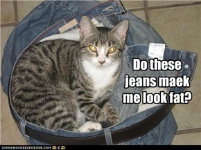 Do these jeans maek me look fat?