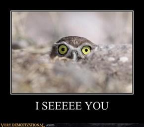 I SEEEEE YOU