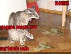 MOM!!! goggie playin wif my fuudz agin