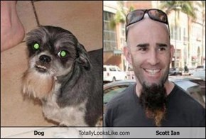 Dog Totally Looks Like Scott Ian