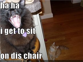 ha ha i get to sit on dis chair