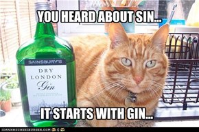 YOU HEARD ABOUT SIN...