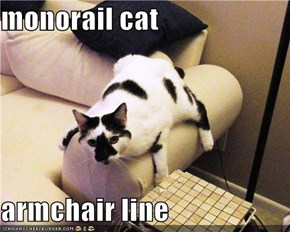 monorail cat  armchair line