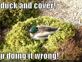 duck and cover!  u doing it wrong!