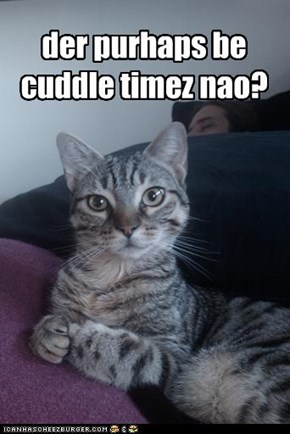 der purhaps be cuddle timez nao?