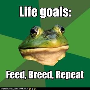 Foul Bachelor Frog: Life goals