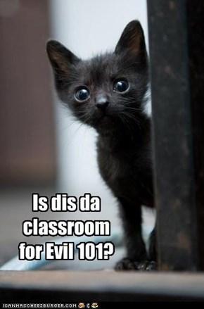 Is dis da classroom for Evil 101?