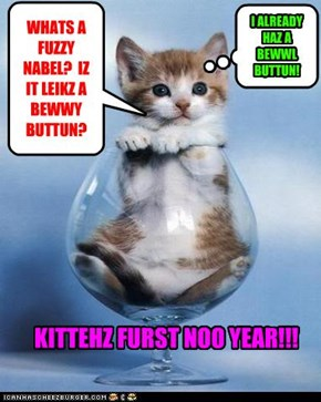 WHATS A FUZZY NABEL?  IZ IT LEIKZ A BEWWY BUTTUN?