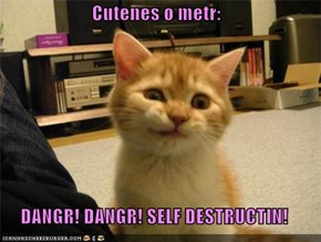 Cutenes o metr:  DANGR! DANGR! SELF DESTRUCTIN!