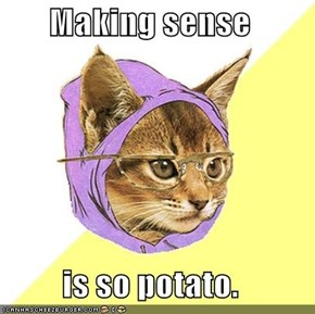 Hipster Kitty: Making Sense