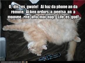 O,  dis   es  gwate!   Ai haz da phone an da remote.  Ai ken ordurs  a  peetsa  an  a moovee,  rite  affa  mai  nap.    Life  es  gud!