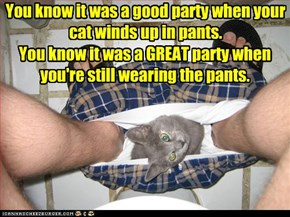 You know it was a good party when your cat winds up in pants.