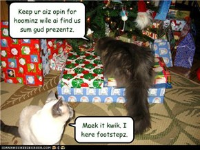 Kittehs on Santa's Nauteh List