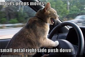 moves peeps moves!  small petal right side push down!