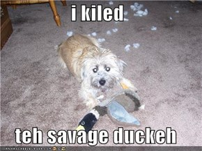 i kiled  teh savage duckeh