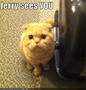 Jerry sees YOU