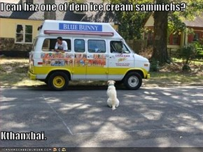 I can haz one of dem ice cream sammichs?  Kthanxbai.