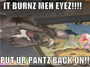 IT BURNZ MEH EYEZ!!!!  PUT UR PANTZ BACK ON!!!!