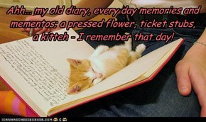 Ahh... my old diary, every day memories and mementos; a pressed flower, ticket stubs,  a kitteh - I remember that day!