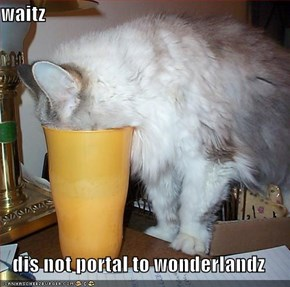 waitz  dis not portal to wonderlandz