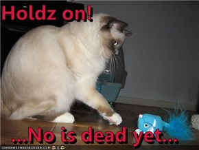 Holdz on!  ...No is dead yet...