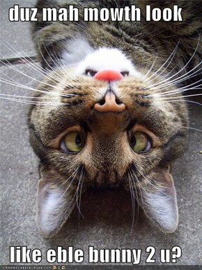 duz mah mowth look   like eble bunny 2 u?