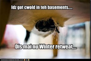 Idz got cwold in teh basements.....