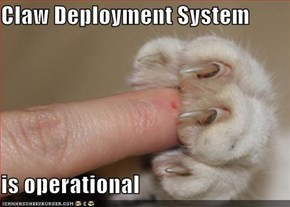 Claw Deployment System  is operational