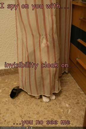 I spy on you with... invisibility cloak on... ...you no see me