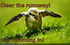 Clear the runnway!   I'm comming in!