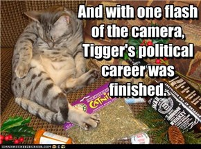 And with one flash of the camera, Tigger's political career was finished.