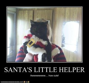 SANTA'S LITTLE HELPER