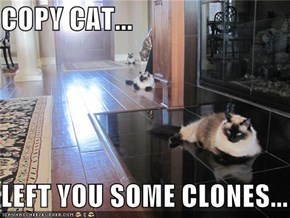 COPY CAT...  LEFT YOU SOME CLONES...