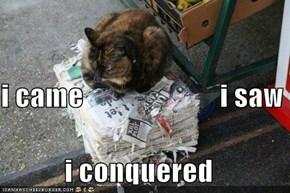 i came                        i saw  i conquered