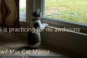 i is practicing for mi awdisions wif Mer Cat Manor