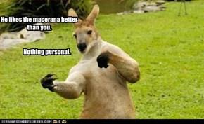 Macerana Kangaroo