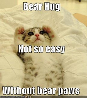 Bear Hug Not so easy Without bear paws