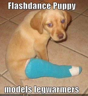 Flashdance Puppy  models legwarmers