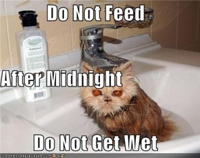 Do Not Feed  After Midnight Do Not Get Wet