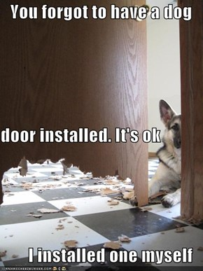 You forgot to have a dog door installed. It's ok I installed one myself