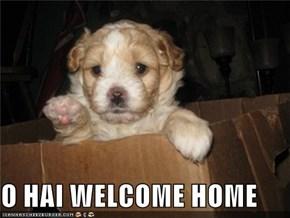 O HAI WELCOME HOME