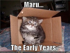 Maru...  The Early Years