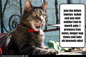 join the kitteh ewnien  todah and yoo shel nebber hab to woork agin. I promess free noms, longer nap tiems and lods ob tummeh rubs!