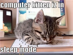 computer kitten iz in  sleep mode