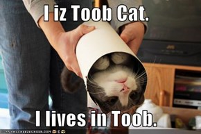 I iz Toob Cat.  I lives in Toob.