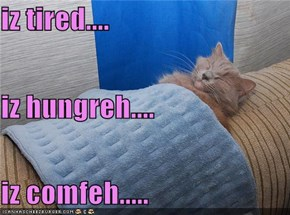iz tired.... iz hungreh.... iz comfeh.....
