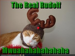 The Real Rudolf  Mwuahahahahahaha
