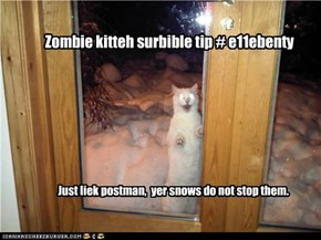 Zombie kitteh surbible tip # e11ebenty